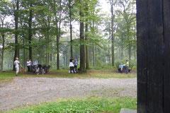 Taunushöhen,T-Dogs, 7.9.2014, Foto Nr.5