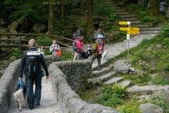 Schweiz-Tessin T-Dogs,Mai 2013, Foto Nr.5