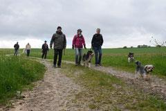 Rhön Frühlingserwachen,T-Dogs,3.+4.5.2014, Foto Nr.3