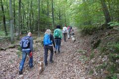 Kapersburg+Winterstein, T-Dogs, 5.10.2014, Foto Nr. 2
