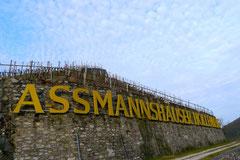 Assmannshäuser Höllenberg, März 2013 Foto Nr.5