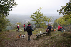 Gimbi,Staufen,Kaisertempel, T-Dogs, 12.10.2014, Foto Nr.9