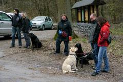 Hundeschulausflug-Sicher auf 4 Pfoten-Herzberg, April 2013, Foto Nr.1