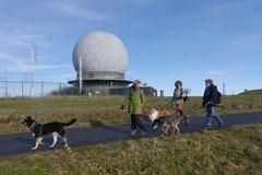 Rhön,Wellness+Wandern,T-Dogs,7.-9.11.2014, Foto Nr.22