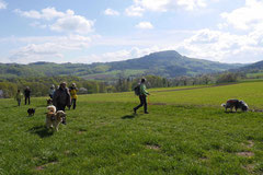 Mantrailing+Wandern Rhön,T-Dogs,30.4.-3.5.2015 Foto Nr.2