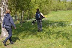 Mantrailing+Wandern Rhön,T-Dogs,30.4.-3.5.2015 Foto Nr.19