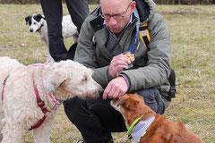 Lindenfels, T-Dogs, 7.3.2015 Foto Nr.10