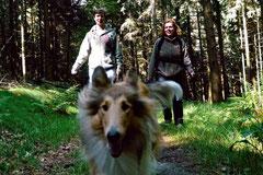 Rund um den Zacken, Trekking-Dogs,30.6.13, Foto Nr.1