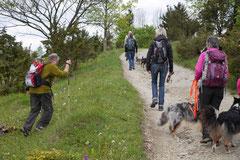 Rhön Frühlingserwachen,T-Dogs,3.+4.5.2014, Foto Nr.31