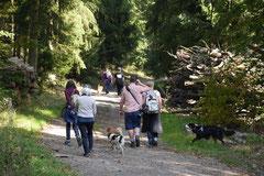 Grünwiesenweiher Welttierschutztag, T-Dogs, 4.10.2014 Foto Nr.13