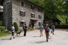 Schweiz-Tessin,T-Dogs,Mai 2014 Foto Nr.49