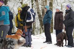 Altkönig,T-Dogs,01.2.2014, Foto Nr.13