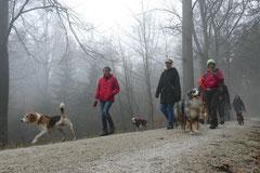 Schnuppertour Bleibeskopf,T-Dogs,14.12.2013, Foto Nr.7