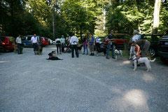 Hundeschulausflug- Rund um den Zacken,8.9.2012