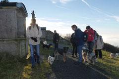 Rhön,Wellness+Wandern,Nov 2013 Foto Nr.:29