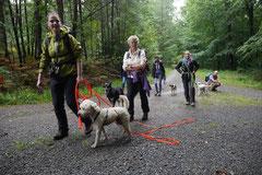 Drachenwege 2,T-Dogs,31.8.2014, Foto Nr.5