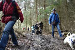 Kapersburg+Winterstein,23.3.14,T-Dogs, Foto Nr.13