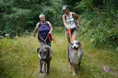 Wispersee, T-Dogs,28.07.2013, Bild Nr.5