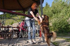 Assmannshäuser Höllenberg, T-Dogs, 17.5.2015 Foto Nr.19