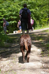Lindenfels mit Picnic,T-Dogs,15.6.2014,Foto Nr.17