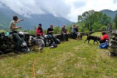 Schweiz-Tessin T-Dogs,Mai 2013, Foto Nr.27