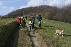 Bensheimer Weinlagen, März 2013 Foto Nr.21