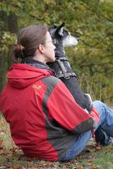 Gimbi,Staufen,Kaisertempel, T-Dogs, 12.10.2014, Foto Nr.15