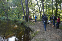 Grünwiesenweiher Welttierschutztag, T-Dogs, 4.10.2014 Foto Nr.2