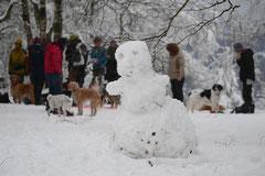 Altkönig,T-Dogs,01.2.2014, Foto Nr.12
