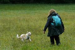 Klosterrunde,T-Dogs,06.10.2013, Foto Nr.4