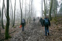 Gimbi,Staufen,Kaisertempel,T-Dogs,2.2.2014, Foto Nr.13