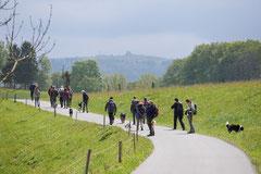 Rhön Frühlingserwachen,T-Dogs,3.+4.5.2014, Foto Nr.8