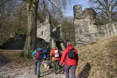 Ruine Rodenstein