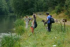 Wispersee, T-Dogs,28.07.2013, Bild Nr.11
