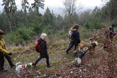 Herzberg und Limes,T-Dogs,6.12.2014, Foto Nr.9