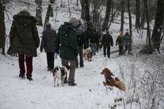 Schnuppertour Gimbacher Hof,T-Dogs,31.1.2015 Foto Nr.12