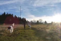 Rhön,Wellness+Wandern,Nov 2013 Foto Nr.:30