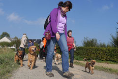 Grünwiesenweiher Welttierschutztag, T-Dogs, 4.10.2014 Foto Nr.5