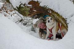 Altkönig,T-Dogs,01.2.2014, Foto Nr.17