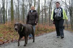 Hofheimer Kapellenberg,T-Dogs,15.12.2013, Foto Nr.13