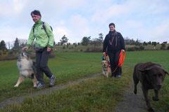 Rhön,Wellness+Wandern,T-Dogs,7.-9.11.2014, Foto Nr.12