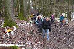 Schnuppertour Gimbacher Hof,T-Dogs,31.1.2015 Foto Nr.5