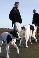 Rod an der Weil, T-Dogs,12.1.14, Foto Nr.11