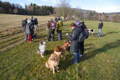 Rod an der Weil, T-Dogs,12.1.14, Foto Nr.19