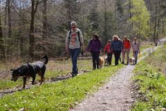 Taunushöhen,T-Dogs,18.4.2015 Foto Nr.18