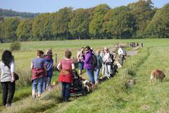 Grünwiesenweiher Welttierschutztag, T-Dogs, 4.10.2014 Foto Nr.10