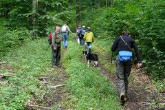 Rund um den Zacken, Trekking-Dogs,30.6.13, Foto Nr.16