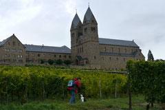 Klosterrunde,T-Dogs,06.10.2013, Foto Nr.12