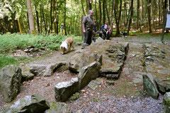 Rund um den Zacken, Trekking-Dogs,30.6.13, Foto Nr.9