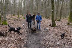 Kapersburg+Winterstein,23.3.14,T-Dogs, Foto Nr.12